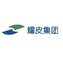 耀皮-上海耀皮玻璃集团股份有限公司